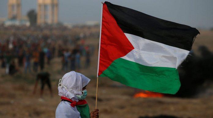 Palestina 2 sionistas