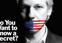 wikileaks-julian-assange-cover-2010